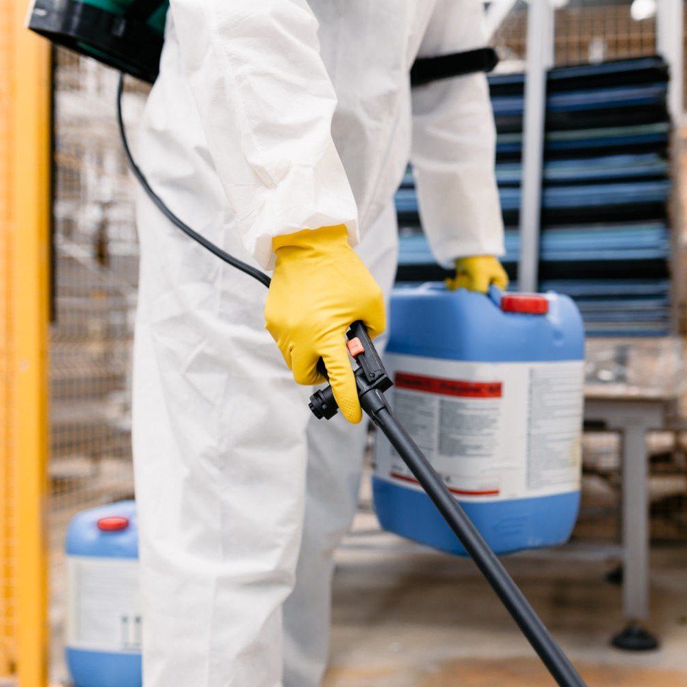 Sanitar   Санитар   Профессиональное уничтожение насекомых и грызунов!   Уничтожение насекомых в Днепре   Служба Уничтожения Тараканов